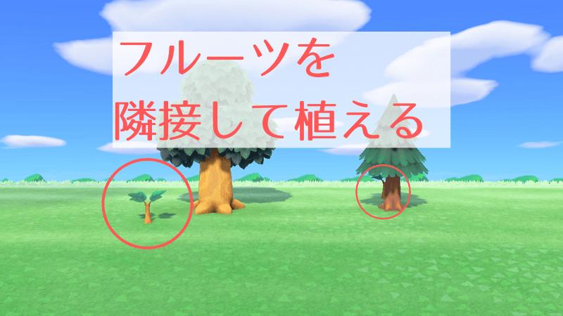 あつ 森 木 育た ない