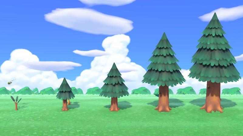 森 木 あつ 植え 方 ヤシ の